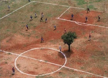 Futebol luta contra o desmatamento...