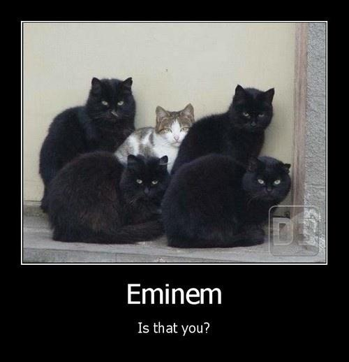 a.aaa-Eminem-Is-that-you